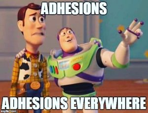What is an adhesion?